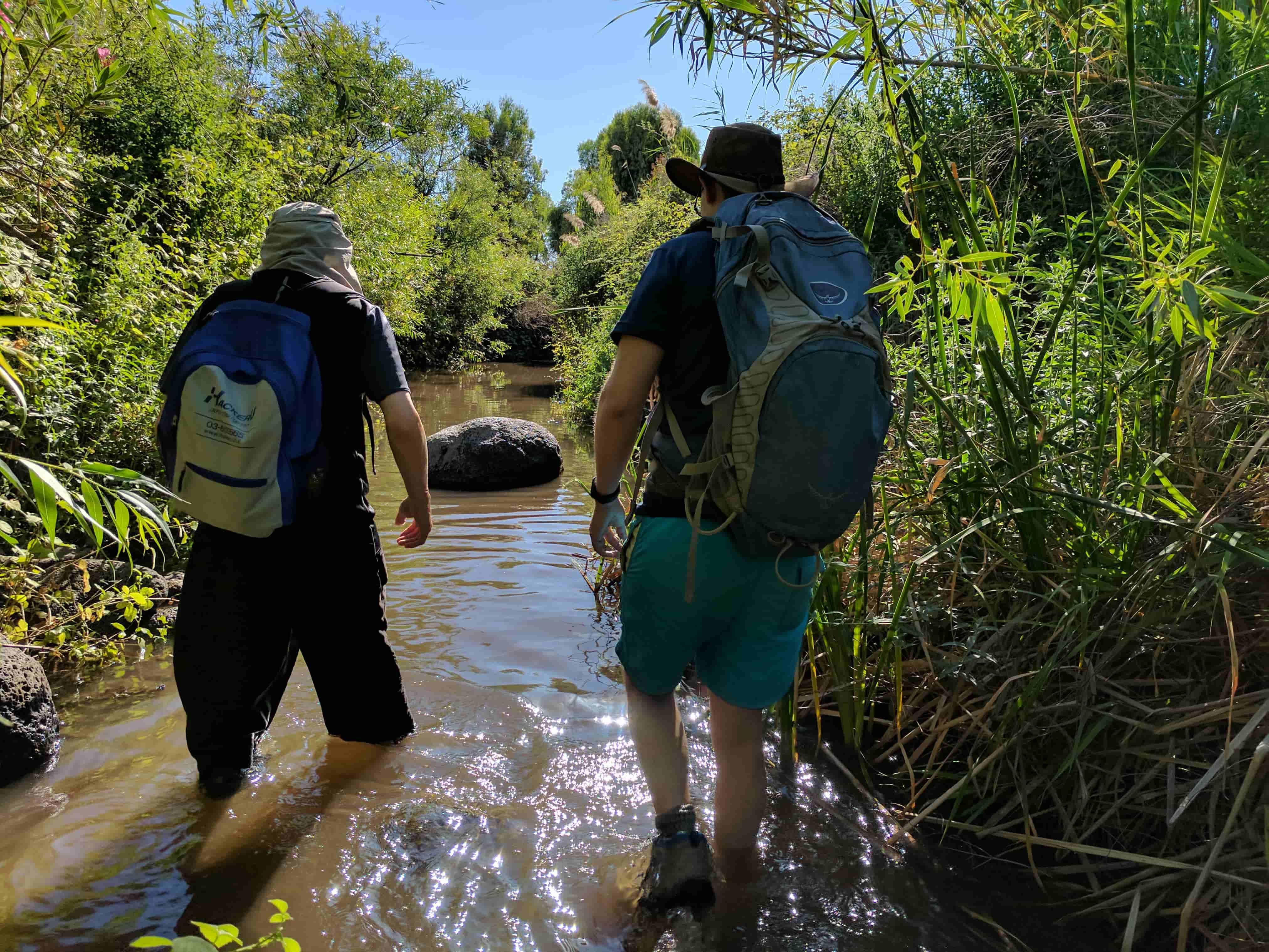 נחל הזאכי כניסה למים